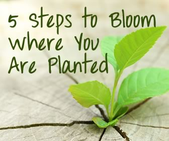 Nursing: Finding Ways to Bloom Where You Are Planted