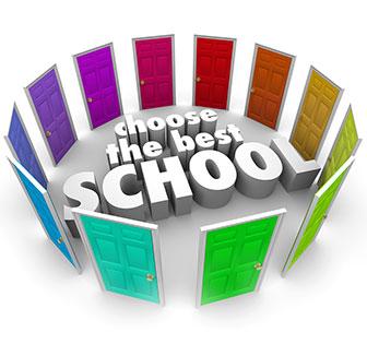 2017 Student Survey: School Profiles