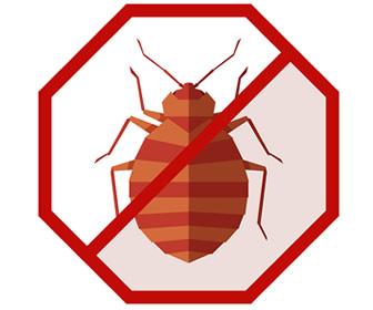 I've Got Bugs in My Bed and I Don't Know...How to Get Rid of Them