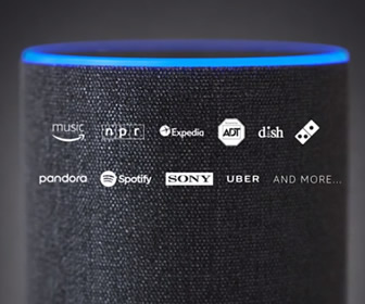 Amazon Echo (Echo, Echo Dot)
