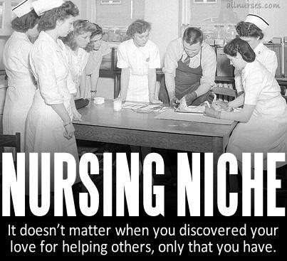 The Nursing Niche